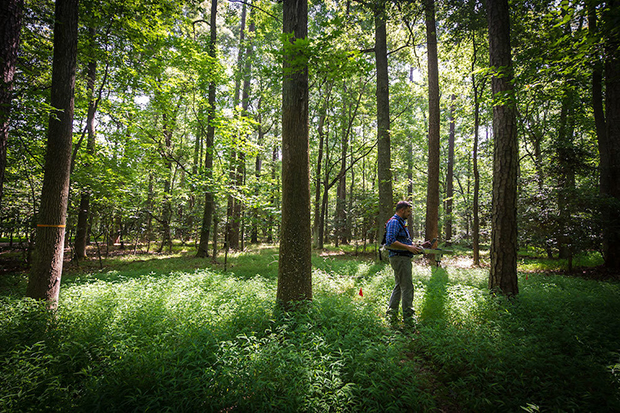 Jeff W. Atkins, Ph.D., a post-doctoral researcher in VCU's Department of Biology, uses a lidar system to collect data in a forest at VCU's Rice Rivers Center in 2016. (Photo by Julia Rendleman, University Marketing)